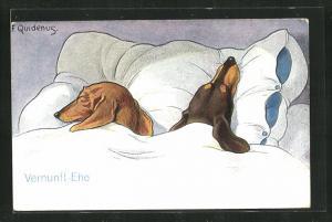 Künstler-AK Fritz Quidenus: Vernunft-Ehe, Zwei Dackel liegen im Bett