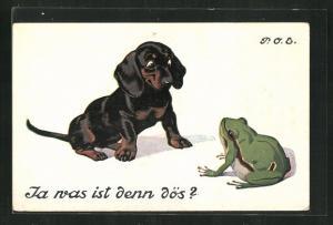 Künstler-AK P. O. Engelhard (P.O.E.): Dackel und Laubfrosch beäugen sich neugierig