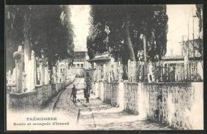 AK Trébizonde, Route et mosquée d`Issard