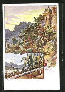 Künstler-AK Monaco, Jardins