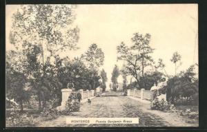 AK Monteros, Puente Benjamin Araoz