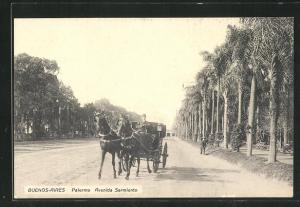 AK Buenos-Aires, Palermo, Avenida Sarmiento