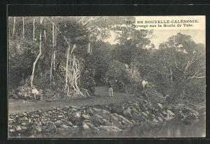 AK Nouvelle-Calédonie, Paysage sur la Route de Yate