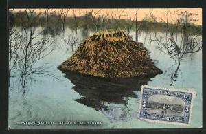 AK Panama, Submerged Native Hut At Gatun Lake