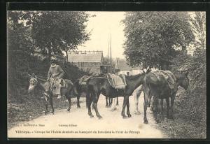 AK Vibraye, Groupe de Mulets destines au transport du bois dans la Foret de Vibraye