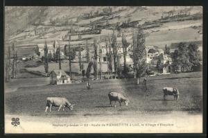 AK Esquieze, Route de Pierrefitte a Luz, Kühe