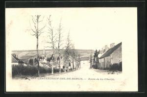 Passepartout-AK Chateauneuf-Val-de-Bargis, Route de La Charite