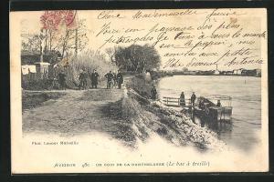 AK Avignon, Un coin de la Barthelasse