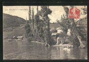 AK Talloires, Rives du Lac