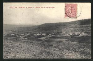 AK Coiffy-le-Haut, Vallon et Hameau des Granges-Huguet