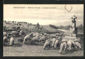 AK Joue-du-Plain, La Croix de Libardon