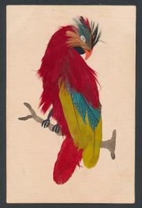 AK Rot-gelber Vogel aus echten Federn