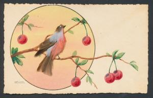 AK Rotkehlchen aus echten Federn auf einem Kirschbaum