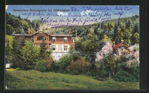 AK Görbersdorf, Sanatorium Blitzengrund mit Umgebung