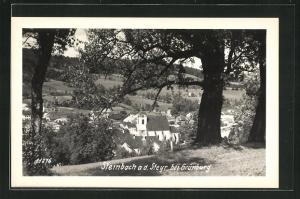 AK Steinbach a. d. Steyr, Totalansicht mit Bäumen