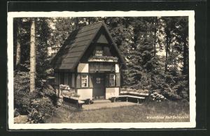 AK Bad Salzbrunn, Waldbühne, Kleines Haus