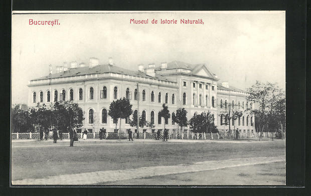 AK Bucuresti, Museul de Istorie Naturala 0
