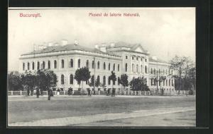 AK Bucuresti, Museul de Istorie Naturala