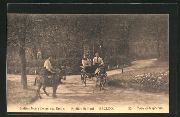 AK Eecloo, Institut Notre Dame aux Epines, Pavillon St-Paul, Toby et Napoleon, Esel mit Kutsche und Damensattel 0