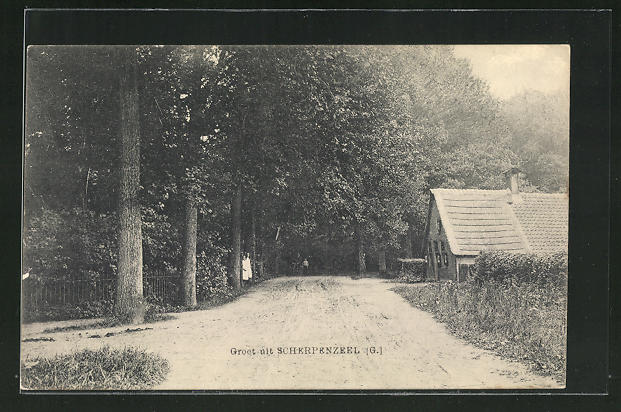 AK Scherpenzeel, Haus an Waldesrand mit Landstrasse 0