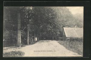 AK Scherpenzeel, Haus an Waldesrand mit Landstrasse