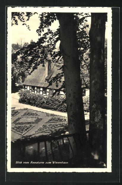 AK Bad Salzbrunn, Blick vom Annaturm zum Wiesenhaus 0