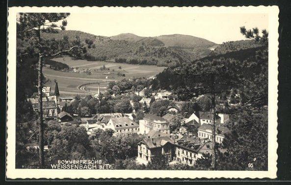AK Weissenbach a. Tr., Totalansicht 0