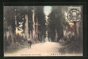 AK Nikko, Chryptomeria road Imaichi