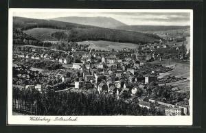 AK Waldenburg-Dittersbach, Totalansicht