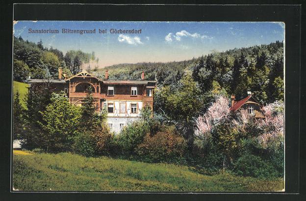 AK Görbersdorf, Sanatorium Blitzengrund 0