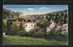 AK Görbersdorf, Sanatorium Blitzengrund