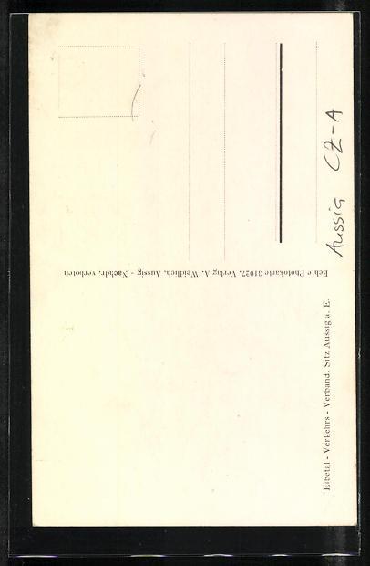AK Aussig / Usti, Teilansicht und Denkmal 1