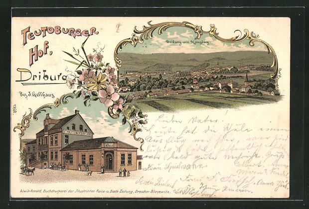 Lithographie Driburg, Gasthaus Teutoburger Hof, Ortsansicht 0
