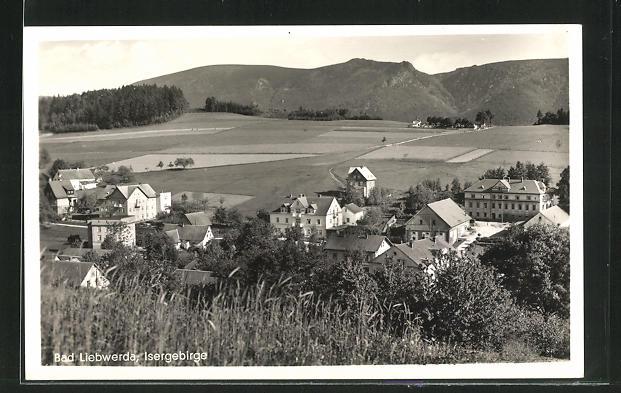 AK Bad Liebwerda / Isergebirge, Teilansicht 0