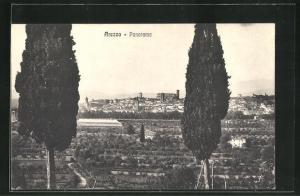 AK Arezzo, Panorama
