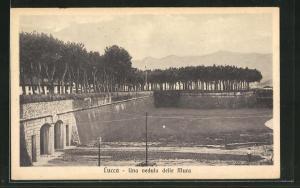 AK Lucca, Una veduta delle Mura