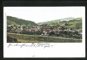 AK Mürzzuschlag, Panorama