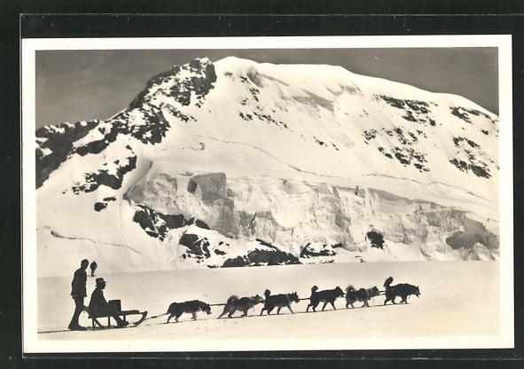 AK Jungfraujoch mit Mönch und Polarhunden 0
