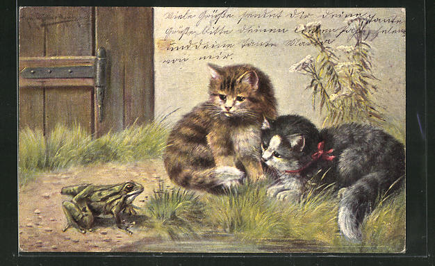 Künstler-AK Zwei Katzen beobachten einen Frosch 0