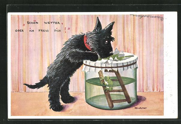 Künstler-AK Schön Wetter oder ich fress Dich!, Hund am Glas mit Wetterfrosch 0