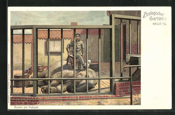 Lithographie Halle a. S., Bupari als Podium, Elefant mit Pfleger 0