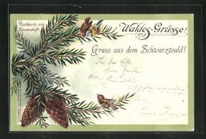 Duft-AK Waldes-Grüsse aus dem Schwarzwald, Tannenzweig mit Zapfen