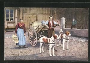 AK Milchkarren mit Hunden, Hundegespann