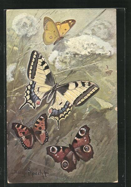 Künstler-AK Schmetterlinge auf der Blumenwiese 0