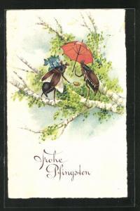 Lithographie Zwei Maikäfer treffen sich auf dem Birkenast