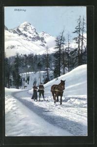 AK Skikjöring, Paar auf Ski lässt sich vom Pferd durch den Schnee ziehen