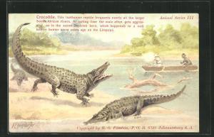 AK Männer schiessen vom Boot aus auf Krokodile am Ufer