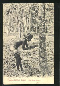 AK Ceylon, Tapping Rubber, Mann beim Gummizapfen