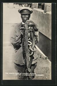 AK The Snake Park attendant & some of his charges, Mann mit Schlangen in der Hand