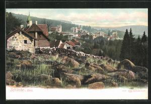 AK Schierke i. Harz, Ortsansicht